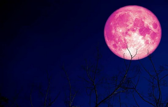 Strawberry Moon Timing
